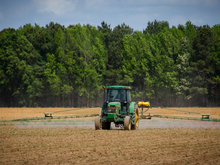 Avvisi bonari agricoltura