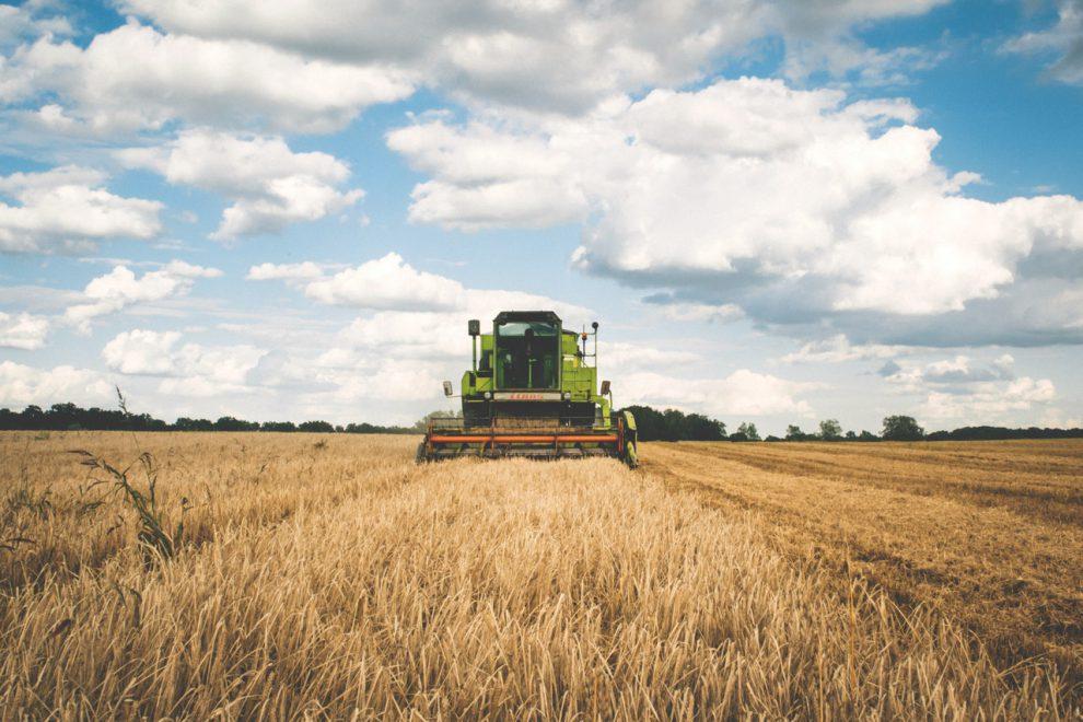 BANDO ISI AGRICOLTURA 2020: ECCO IL CODICE IDENTIFICATIVO