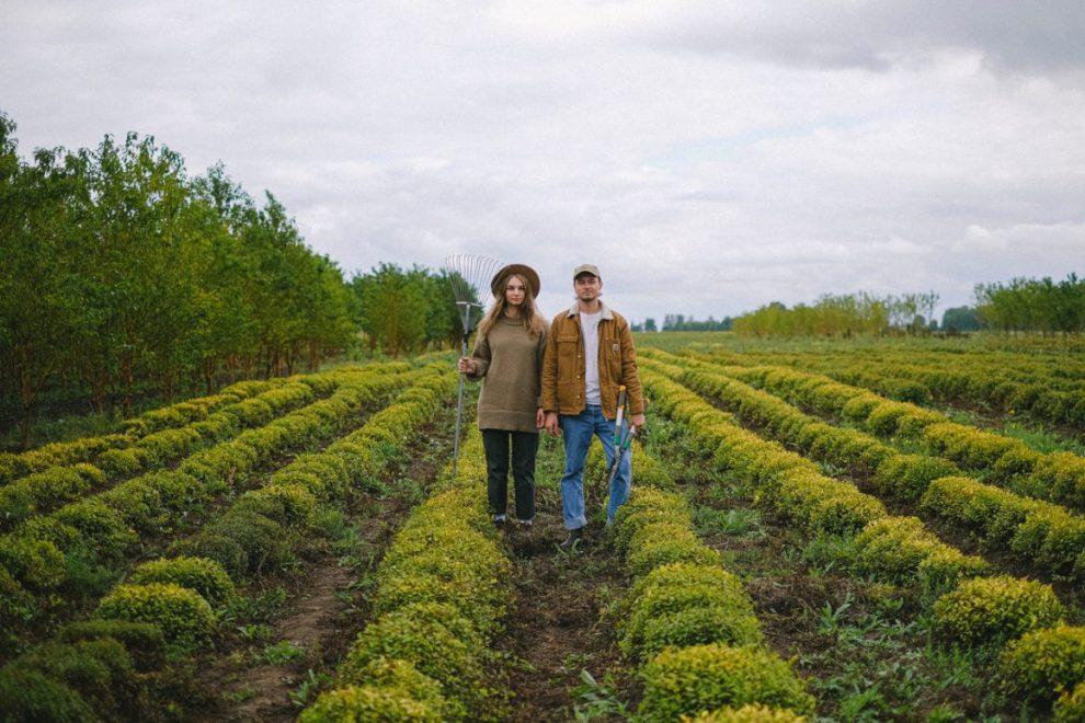 INPS: ECCO I CONTRIBUTI 2021 PERIL LAVORO AGRICOLO