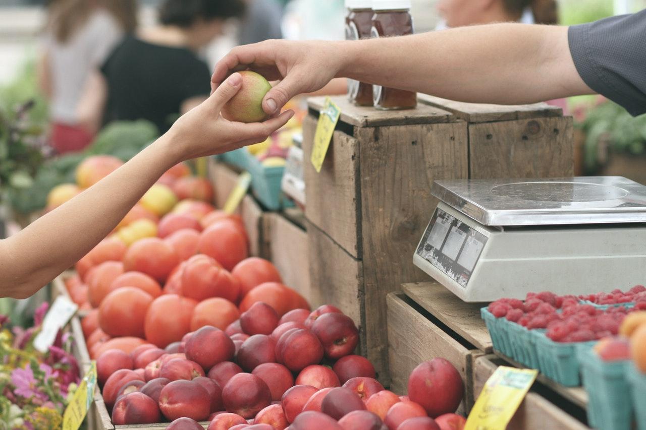 ISMEA INVESTE: il nuovo strumento per la filiera agroalimentare